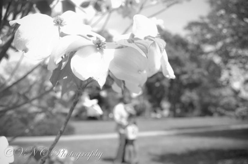 2013_04_21_270-3